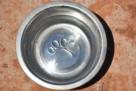 Meadowlake Dog Park Water Bowl