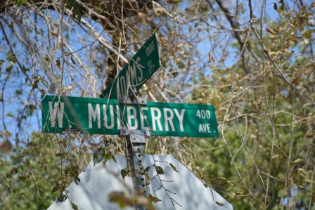 HIDDEN PARK Mulberry Street